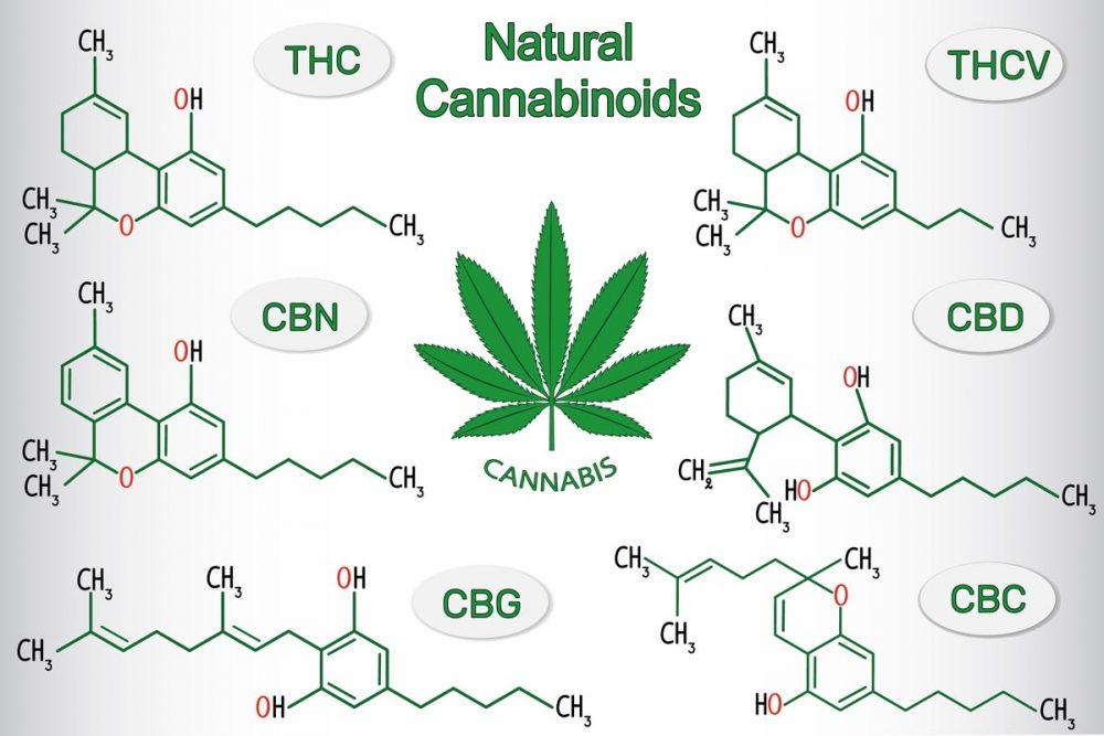 Natural cannabinoids